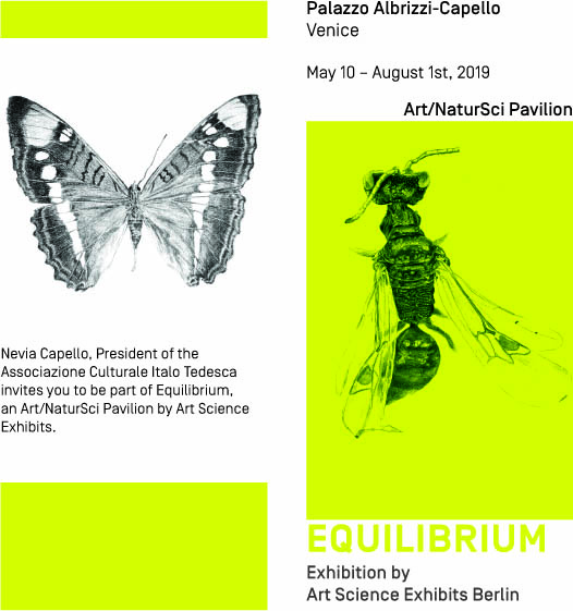 """Equilibrium"" art-science exhibition in Venice 2019"
